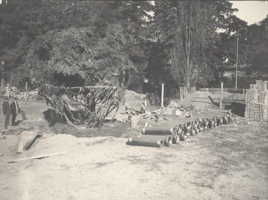 Baumrettung bei den Neubauten des Sprudelhofs in Bad Nauheim - Nachhaltigkeit